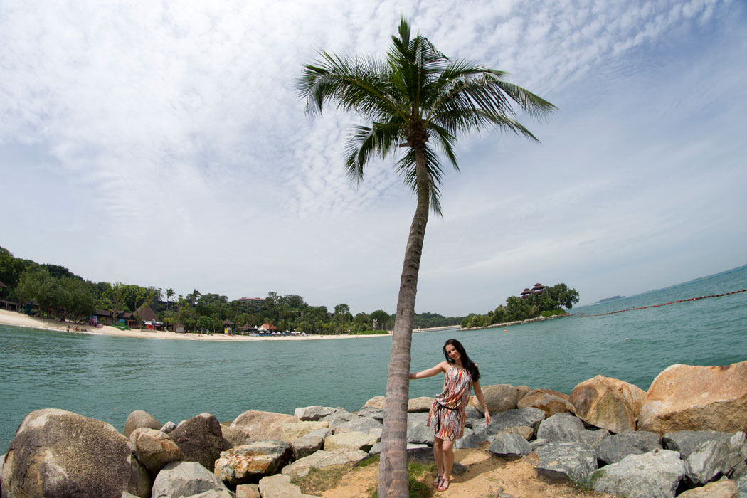 Next to a palm tree with the sea in the background on Sentosa Island