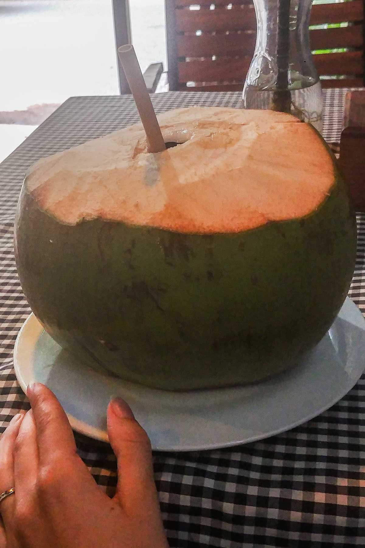 Coconut drink with taveller sustainable bamboo straw